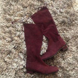 Aquatalia suede knee high chunky heeled boots